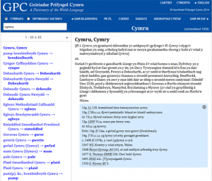 A search result using the Online Dictionary